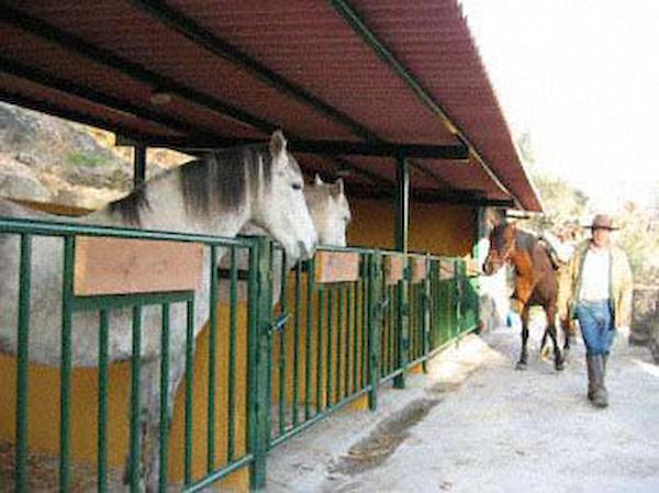casas_agapito_c-t-_rural_68