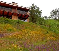 casas_agapito_c-t-_rural_14