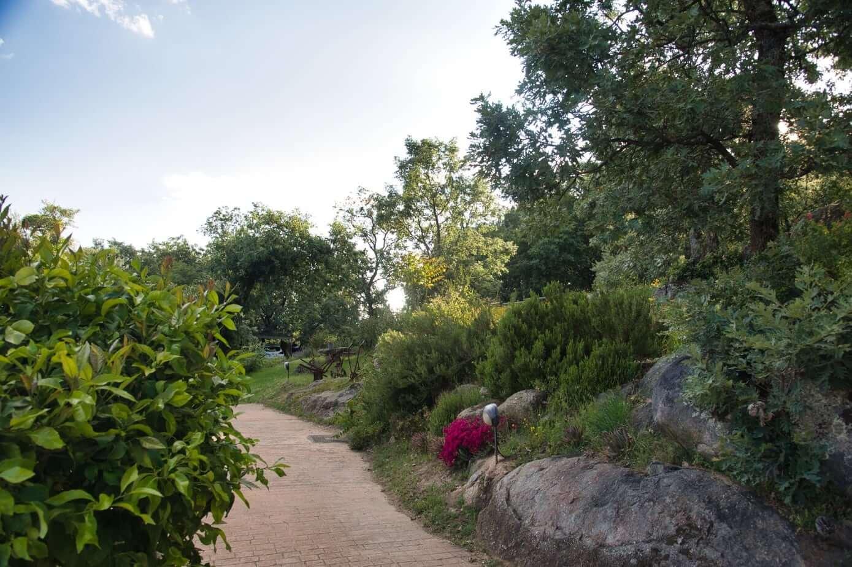 Vegetación de Las Casas Rurales de Agapito
